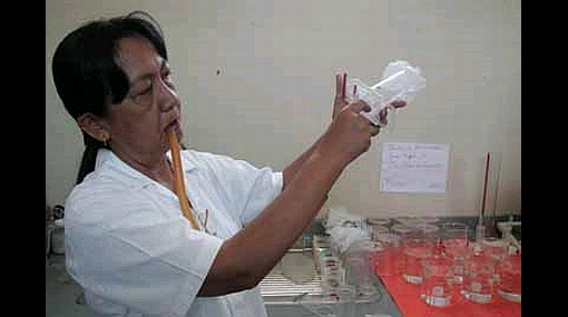 La Libertad registró su primer caso de dengue en lo que va del año 288461