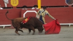 Tribunal Constitucional, Impuestos, Corrida de toros, Acho