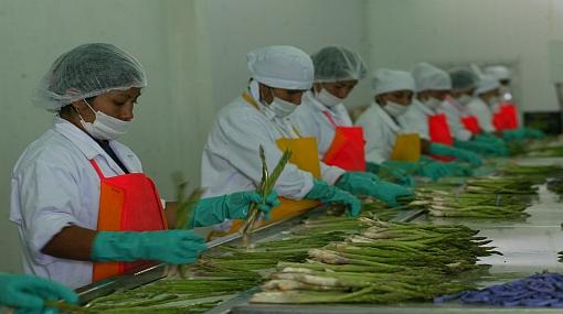 , Agroexportación, Exportaciones peruanas