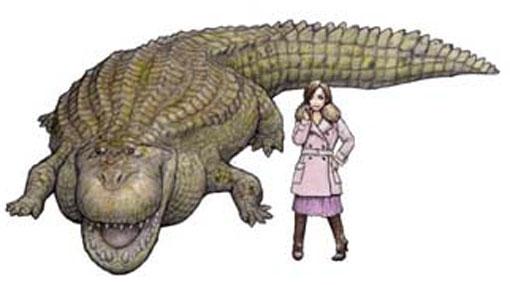 Fósiles, Restos fósiles, Museo Geológico Joanneum,  Universidad de Graz,  Purussaurus,  Stupendemys