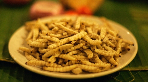Nutrición, China, Insectos, Alimentación, Comida saludable, Curiosidades