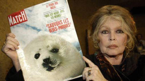 """Brigitte Bardot """"escandalizada"""" por la cacería de elefa"""