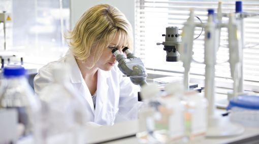 Células madre, Shahragim Tajbakhsh,  Jean-Marc Lemaitre,  Fabrice Chrétien,  Instituto Pasteur
