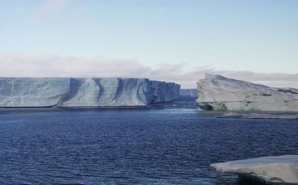 Confirman que crece el proceso de deshielo de la Antártida