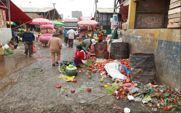 Municipalidad de Lima, La Victoria, La Parada, Mercado de Santa Anita