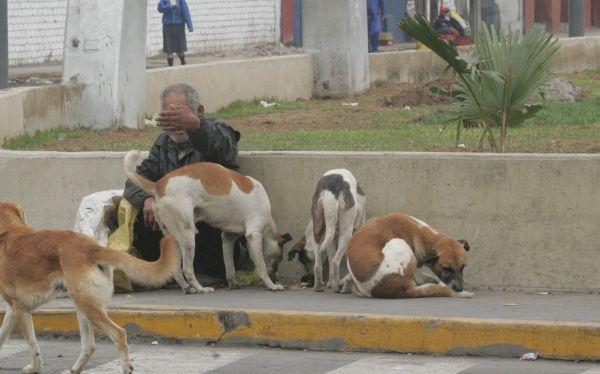 Gobierno aprobó programa para atender adultos mayores abandonados en las calles