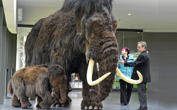 National Geographic, Células madre, Corea del Sur, Mamut, Clonación, Rusia