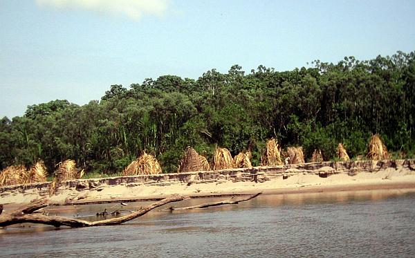Madre de Dios, Comunidades nativas, Tambopata, Tribunal Constitucional, Comunidad nativa Tres Islas