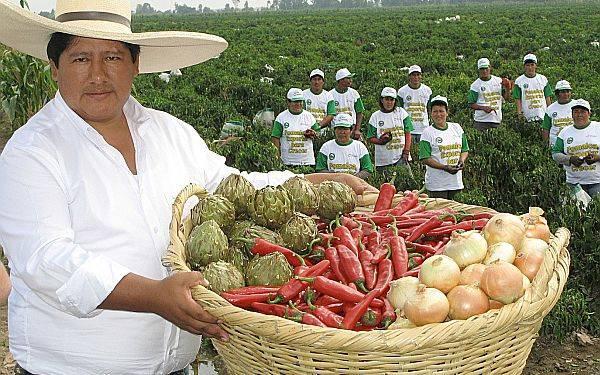 El 2013 se llamará Año de la Inversión para el Desarrollo Rural y la Seguridad Alimentaria