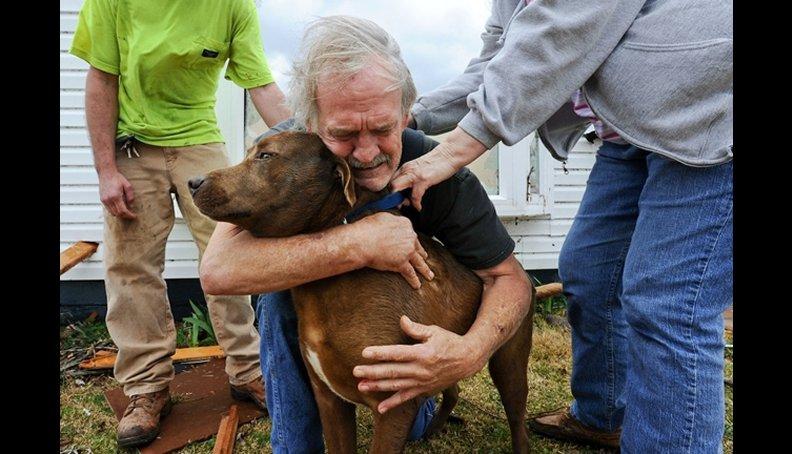 Encuentra su Perro después de devastador Tornado en EEUU